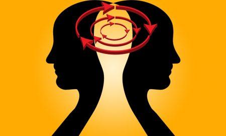 Whole Brain Thinking as a Powerful Skill; A Free, introductory Webinar
