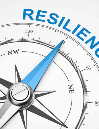 RESILIENCE – A Success Blueprint; Online Workshop; 6th/7th, June
